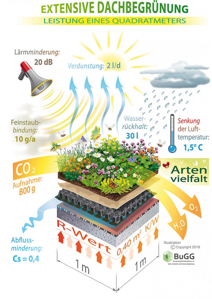 Ein begehbares Dach bietet viele Vorteile