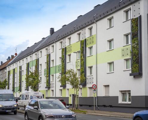 Grüner Anstrich für ein Mehrfamilienhaus.