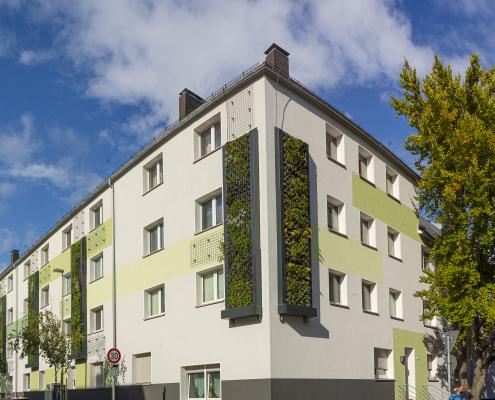 Bessere Luft durch Bepflanzung an der Hauswand.