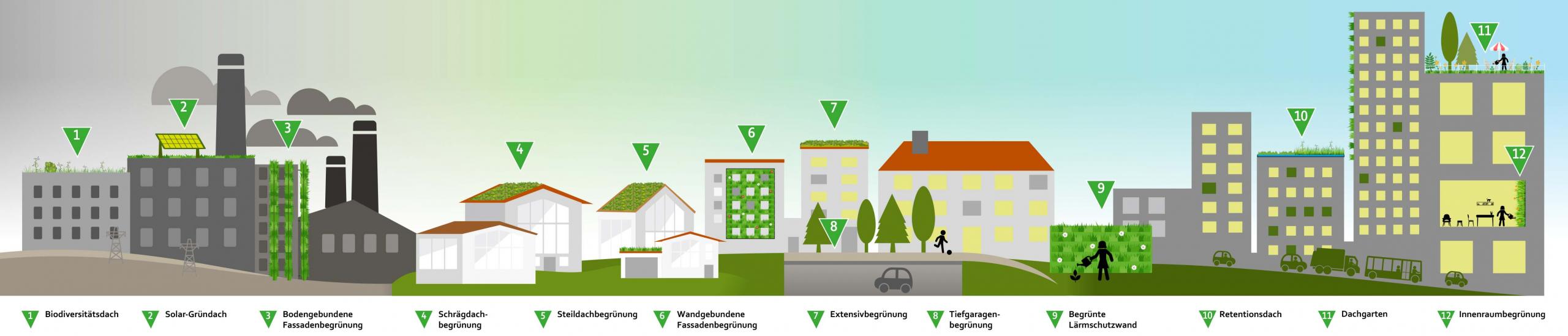 Gründächer sind vielfältig und können auf unterschiedlichen Dächern realisiert werden.